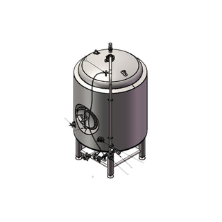 Stainless Steel Craft Beer Bright Tank